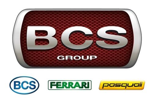 bcsgroup